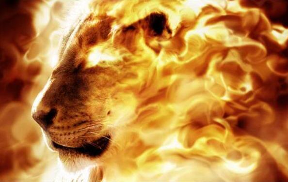 Все квесты от Пламеный лев здесь!
