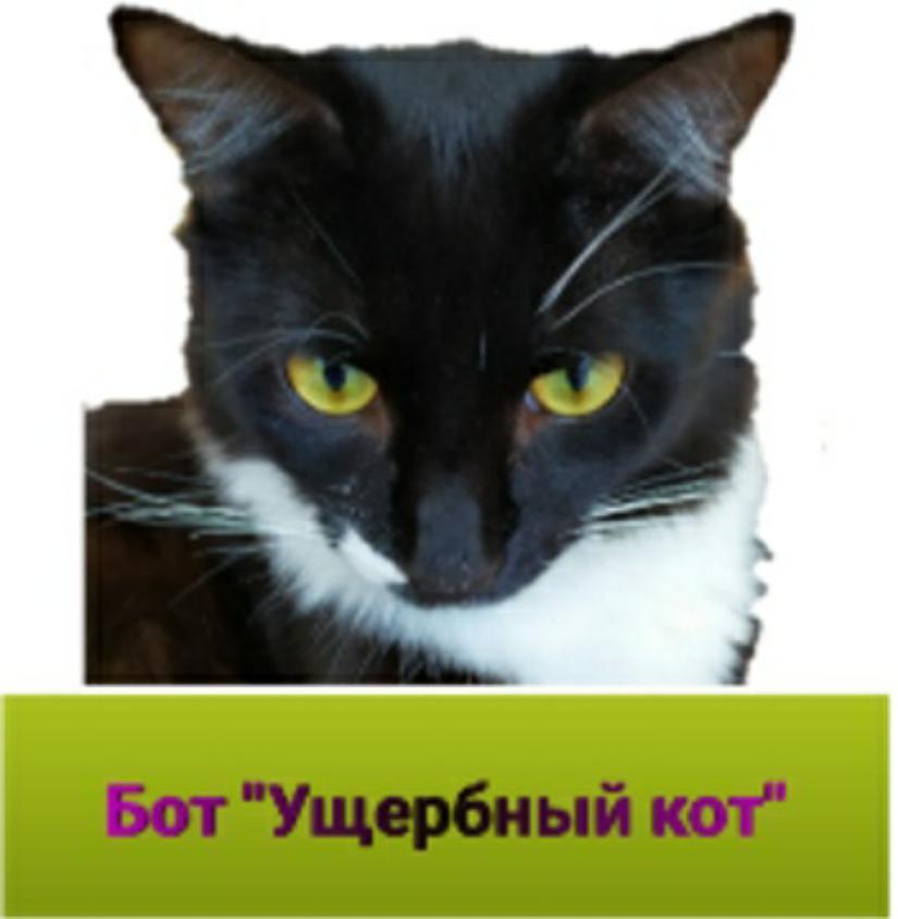 Текстовый квест Ущербный Кот (Бот)