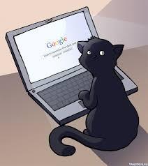 Чёрный кот - страница участника аперо-сообщества