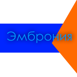 Текстовый квест Виртуальное государство